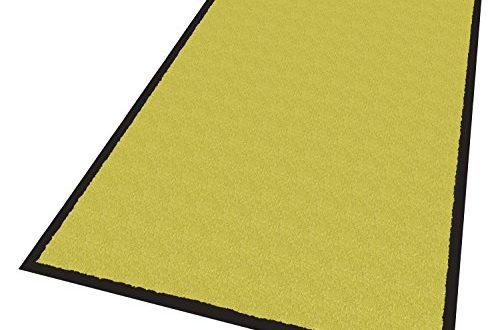 Schmutzfangmatte Professionell 80x120cm, gewerblicher und privater Einsatz, Innen- & Außenbereich, Made in EU (grün)