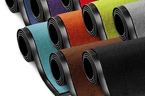 etm Schmutzfangmatte ColorLine Tuermatte in vielen Groessen Fussmatte 500x330 - etm Schmutzfangmatte ColorLine | Türmatte in vielen Größen | Fußmatte für Innenbereich | Rutschfester Teppich für Flur, Haustür, Eingang, Eingangsbereich, Vorzimmer - Rot 90x150 cm