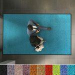 etm Hochwertige Fußmatte | schadstoffgeprüft | bewährte Eingangsmatte in Gewerbe & Haushalt | Schmutzfangmatte mit Top-Reinigungswirkung | Sauberlaufmatte waschbar & rutschfest (60x90 cm, Türkis)